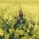 Pretty Young Girl Walks and Turns Around with Waving Hair in the Rape Field. Beautiful Young Woman - VideoHive Item for Sale