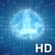 ฺBrain Digital Grid Plexus - VideoHive Item for Sale