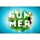 Summer Illustration with Toucan Bird and Parrots - GraphicRiver Item for Sale