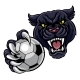 Black Panther Holding Soccer Ball Football Mascot