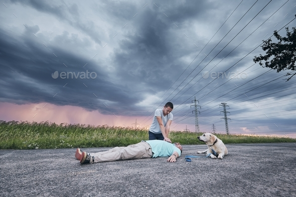 Resuscitation on the road and loyal dog - Stock Photo - Images