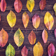 Autumn composition with colorful leaves on wooden table - PhotoDune Item for Sale