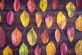 Autumn composition with colorful leaves on wooden table