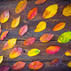 Autumn still life with colorful leaves on wooden table - PhotoDune Item for Sale