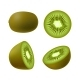 Set of Isolated Realistic Colored Whole Juicy Kiwi - GraphicRiver Item for Sale