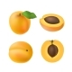 Set of Isolated Colored Apricot