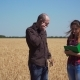 Agronomist Talk By Phone Near Wheat Field and Assistant Writes in Notebook - VideoHive Item for Sale