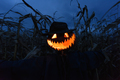 Scary pumpkin scarecrow in a hat - PhotoDune Item for Sale