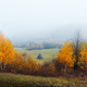 Amazing scene on autumn mountains - PhotoDune Item for Sale