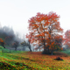 Amazing rural scene on autumn valley - PhotoDune Item for Sale