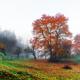 Amazing rural scene on autumn valley - PhotoDune Item for Sale