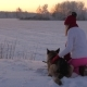 Woman Fondly Petting Dog Sitting In The Snow On A Winter Evening At Sunset - VideoHive Item for Sale