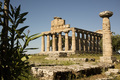 The ancient ruins of Paestum - PhotoDune Item for Sale