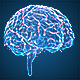 Brains Hologram - VideoHive Item for Sale