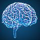Brains Hologram - VideoHive Item for Sale