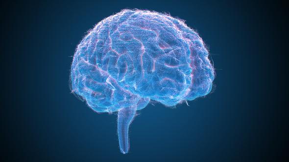 Blue Brains 2 - 4