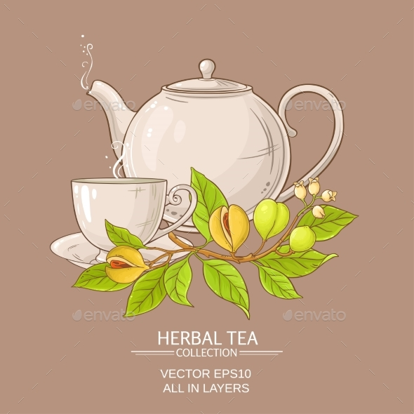 Nutmeg Tea Illustration - Food Objects