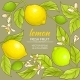 Lemon Vector Frame - GraphicRiver Item for Sale