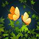 Two Flying Butterflies