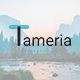 Tameria - Creative Powerpoint Template - GraphicRiver Item for Sale