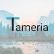 Tameria - Creative Google Slides Template - GraphicRiver Item for Sale