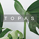 Topas Minimal Project Keynote Template - GraphicRiver Item for Sale