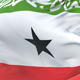 Somaliland Flag Waving - VideoHive Item for Sale