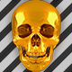 Golden Skulls Rave Party Vj Pack - VideoHive Item for Sale