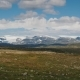 Drive Along the Famous Hardangervidda Plateau in Norway - VideoHive Item for Sale