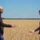 Two Farmers Shake Hands on Background of Field of Barley and Diverge in Different Directions - VideoHive Item for Sale