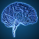 Brain Veins Neurons - VideoHive Item for Sale