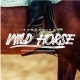 Wild Horse Brush Font