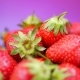 Fresh Strawberries in a Bowl at Purple or Violet Background - VideoHive Item for Sale