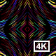 Abstract Colorful Lines 4K - VideoHive Item for Sale
