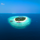 Tropical Island Adventure