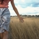 of Woman's Hand Running Through Field, . - VideoHive Item for Sale