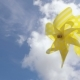 Yellow Pinwheel Toy Against Blue Sky. Summer Concept - VideoHive Item for Sale