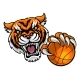 Tiger Holding Basketball Ball Mascot - GraphicRiver Item for Sale