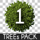 Top View Trees Pack 1