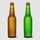 Vector Realistic Empty Glossy Brown and Green Bottle