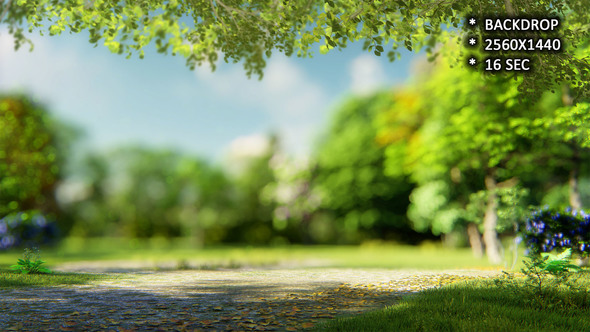 Nature Background For Product Display by Vpmax2007  VideoHive