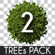 Top View Trees Pack 2