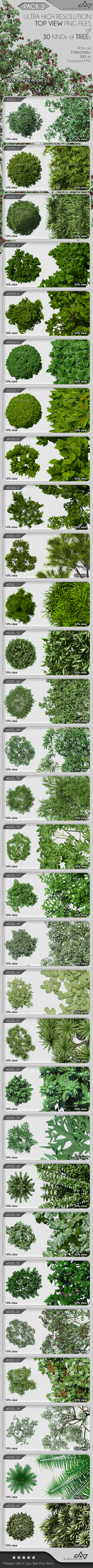 Top View Trees Pack 3 - Objects Illustrations