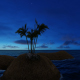 Palm Island Sunrise - VideoHive Item for Sale