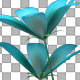 Blue Flower and Grass - VideoHive Item for Sale
