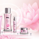 Cosmetics Products Advertising Composition