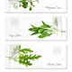 Realistic Herbs Horizontal Banners