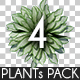 Top View Plants Pack 4