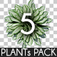 Top View Plants Pack 5