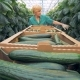 Cucumbers' Harvesting Process Carried Out in a Glasshouse. Healthy Products Production Concept